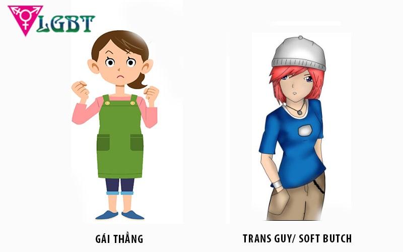 Ngoại hình khác biệt của gái thẳng và gái cong