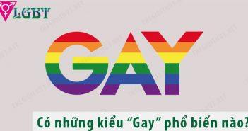 Gay là gì? Đồng tính luyến ái nam có mấy loại?