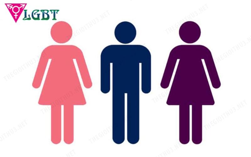 Song tính nam: người nam có thể thích cả nam và nữ