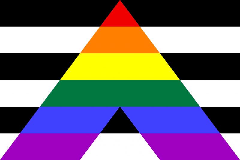 Lá cờ của cộng đồng người dị tính ủng hộ LGBT+ (Straight ally)